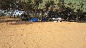 Desert-Tunisie-decembre-2010 1825[1]