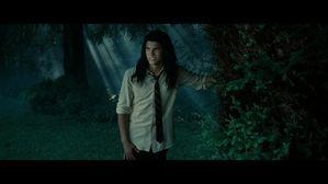 Twilight 14