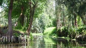 Mexique le blog de g rard et odile for Xochimilco jardin flottant
