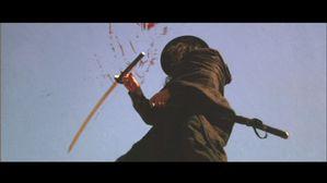 Samourai avenger image 4