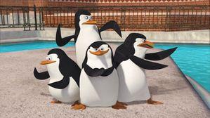 Genderisation_photo-The-Penguins-of-Madagascar-Happy-King-J.jpg