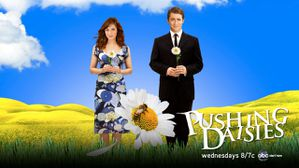pushing_daisies_cancelled.jpg