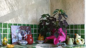 Jardin le 6 09 2014 (97)