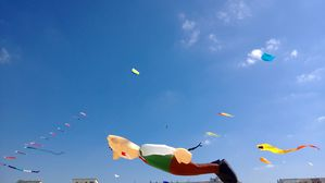cerfs-volants-5.JPG