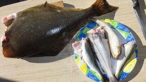 0344-Fauske-la pêche