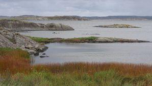 1168-Marstrand