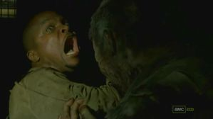Muertes-en-el-3x04The-Walking-Dead.jpg
