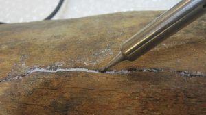 Femur-de-mammouth 7204