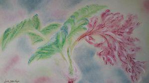 Pastels 0905