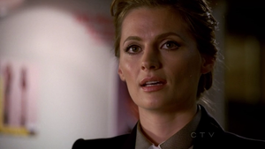 castle-stana-katic.png