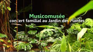 Musicomusee-Visuel.jpg