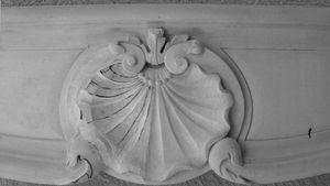 coquille-Louis-XV.jpg