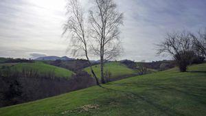 Les collines du Pays basque