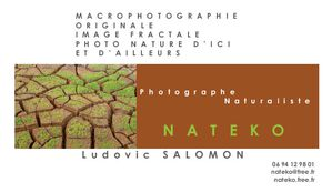 Nateko carte de visite photographe marron