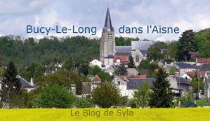 Bucy le Long