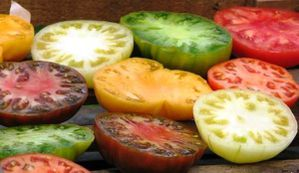 Tomates-coupees.jpg