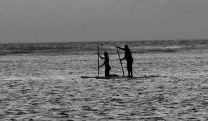 Paddle, Salines