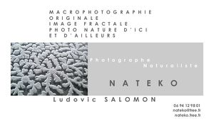 Nateko carte de visite photographe black