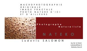 Nateko carte de visite photographe red