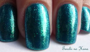 orly Halley's comet 4