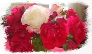 bouquet de roses -copie-1