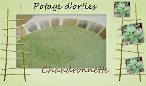 potage_d-orties-chaudronette.JPG