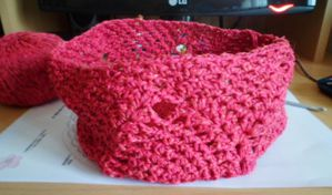 Filet-provision-rose-crochet.JPG
