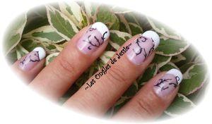 Les comprimés antifungiques au microorganisme végétal des ongles