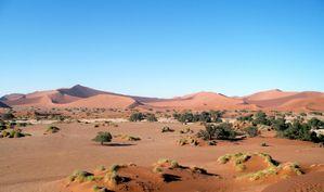 dune 22