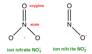 nitrate-et-nitrite-ions.PNG