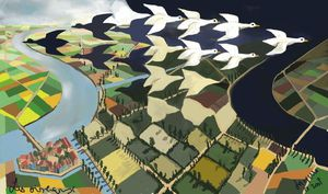 les-oiseaux--NXPowerLite-.jpg