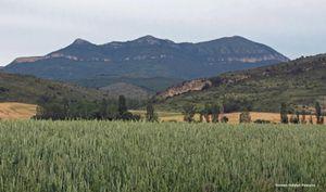 09-06-2012-SENDERISMO-DE-INDURAIN-A-MUGUETAJARRA--6--1--80.jpg