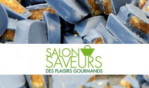 salon-saveurs-plaisirs-gourmands-2011-528x312.jpg