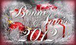 BONNE ANNEE 2012 v4