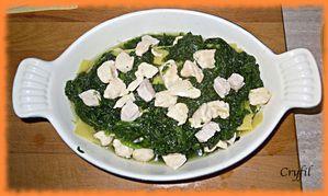 lasagnes-epinards-poulet-10.JPG