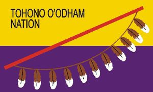 Tohono O'odham Nation (Arizona)