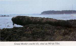 Golfe-du-Morbihan-ilot-d-Er-Lannic-grand-menhir-couche.jpg