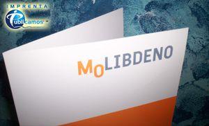 CARPETAS MOLIBDENO (2)