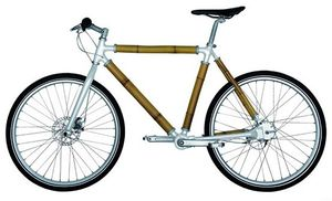 The-Bamboo-Bicycle-1-copie-1.jpg
