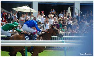Prix de Diane 2012 la course 3