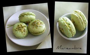 macarons-pistache