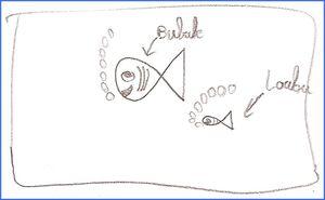 bubule-s.jpg