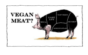 vegan-meat.png