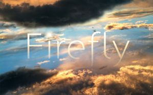 fire fly
