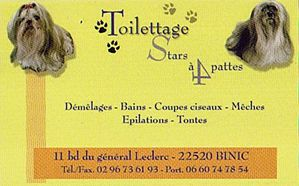 toilettes stars a 4 pattes
