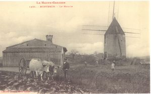 carte-postale-ancienne1