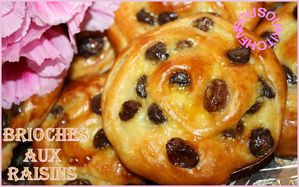 2011-04-05-Brioche-aux-raisins.jpg