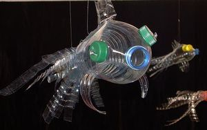 Bottle-fish.JPG