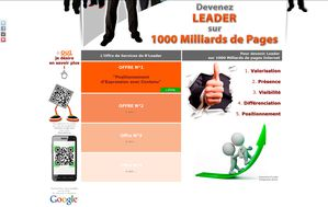 Offre 1 BLeader seo referencement web internet new3s be leader 3d