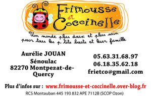 Nouvelle Carte Visite Fri Co N Siret